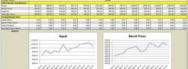 531 Excel Spreadsheet by Poteto v1.28