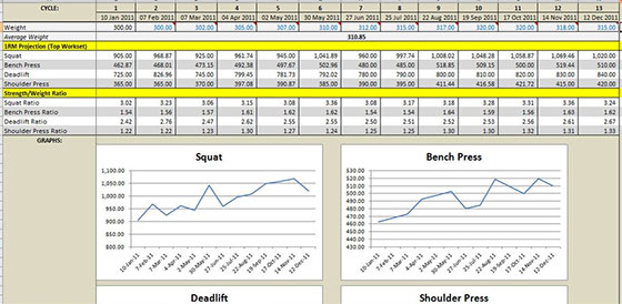 531 Excel Spreadsheet Calculator