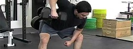 Chinese Row – 45 Degree Bent Over Dumbbell Row