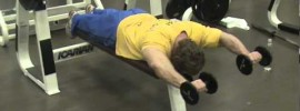Horizontal Shoulder Press John Meadows
