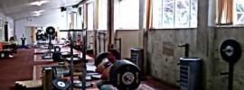 Igor Lukanin 285kg Paused Front Squat