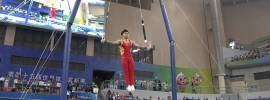 Liu Yang Still Rings 2014 Gymnastics World Championships