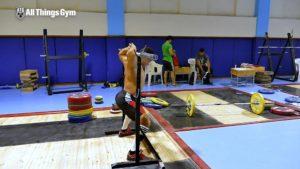 11-Mohamed-Ehab-Overhead-Position-Stretch-02